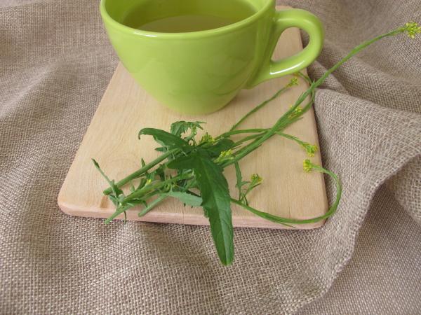 eine tasse tee mit heckensenf