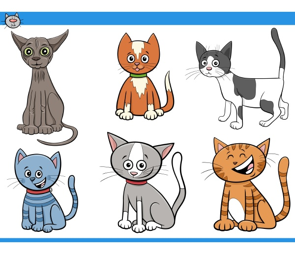 cartoon katzen und kaetzchen comic figuren