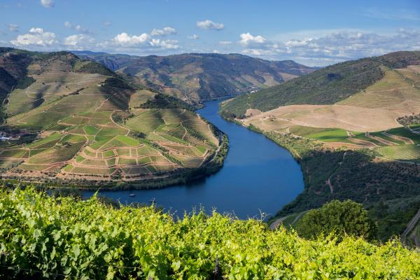 douro tal landschaft