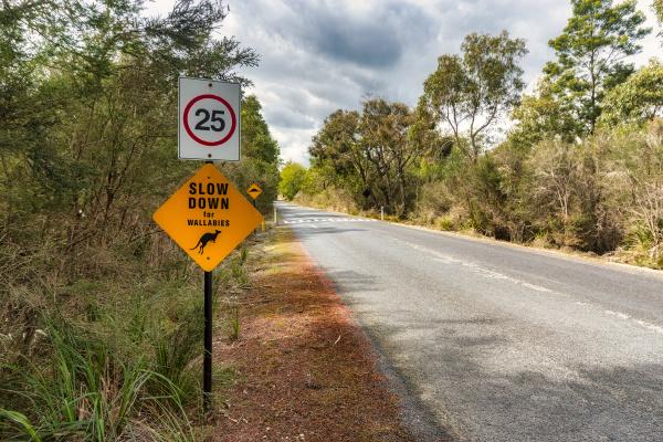 wallaby kreuzung zeichenstrasse gegen himmel victoria