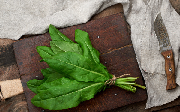 haufen frischer gruener sauerampferblaetter und altem