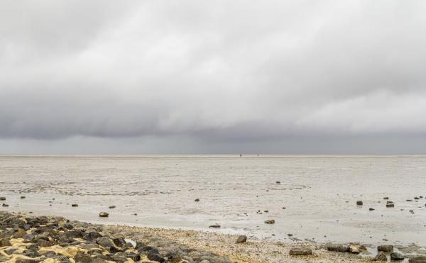 wattenmeer in ostfriesland