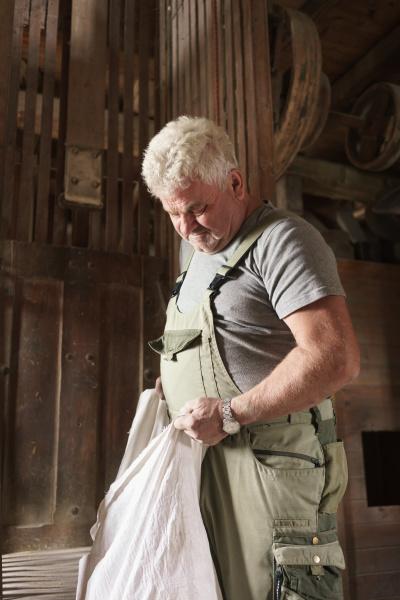 miller legt sack getreide in windmuehlenmaschinen