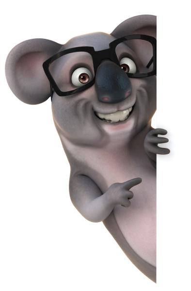 spass koala