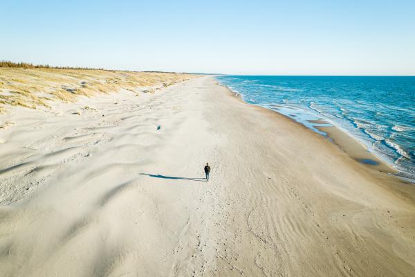 luftaufnahme von reisenden die am strand