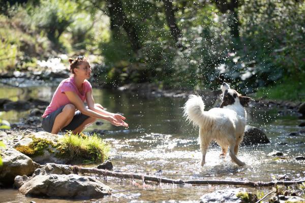 frau und ihr hund im sommerfluss