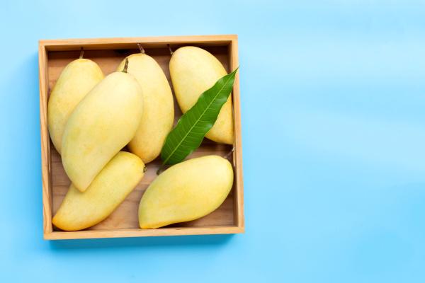 tropische fruechte mango in holzkiste auf