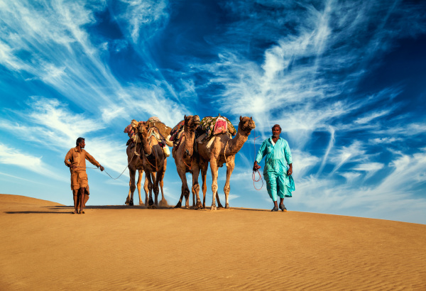 zwei kameltreiber mit kamelen in duenen
