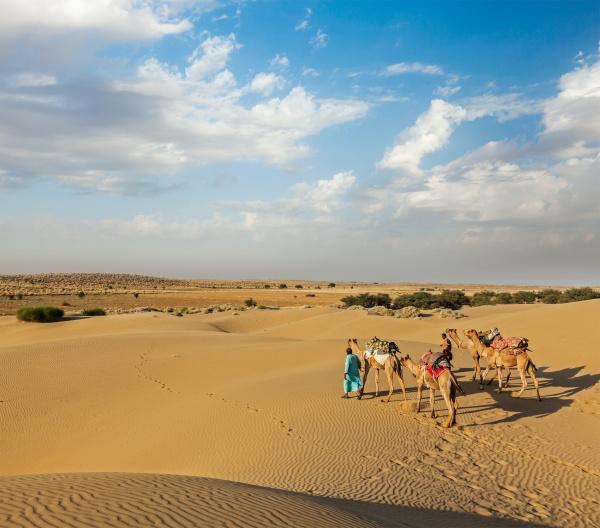 zwei kameleer kameltreiber mit