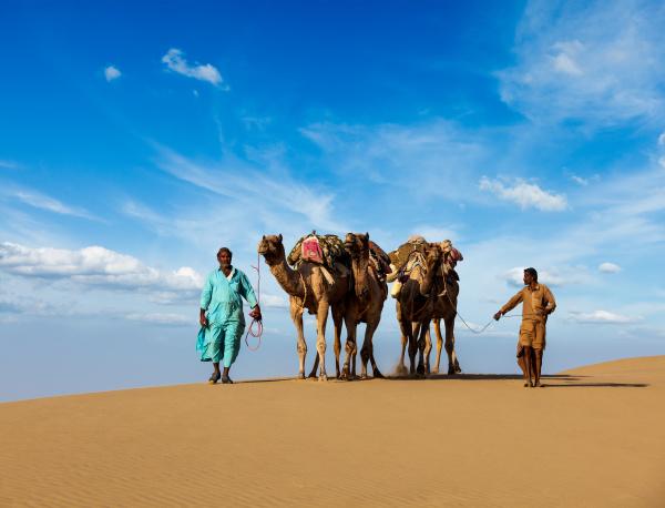 zwei, kameleer, , kameltreiber, , mit - 28467424
