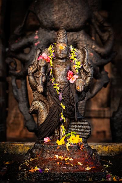murugan, bild, , brihadishwara, tempel, tanjore - 28472458