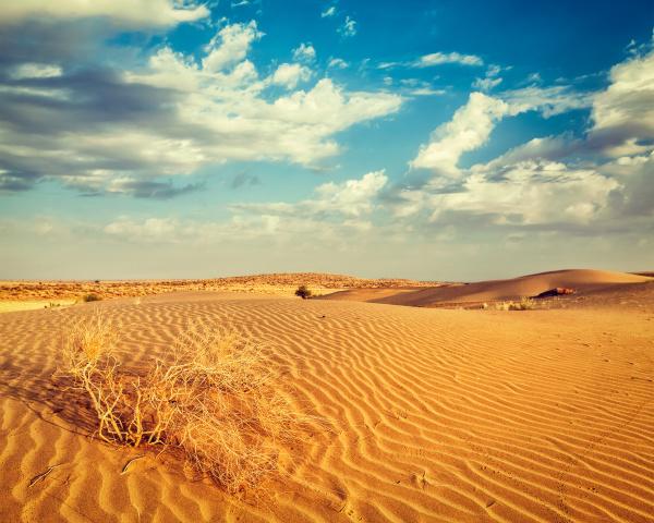 dünen, der, thar, wüste, rajasthan, indien - 28473872