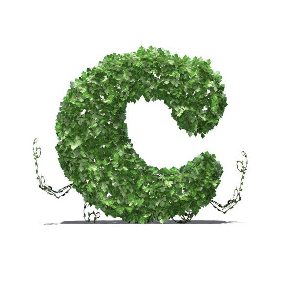 buchstabe c aus gruenen efeublaettern