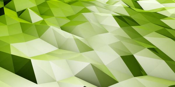 polygon landschaft zusammenfassung