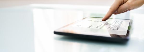 weibliche finanzberaterin mit elektronischer rechnungssoftware
