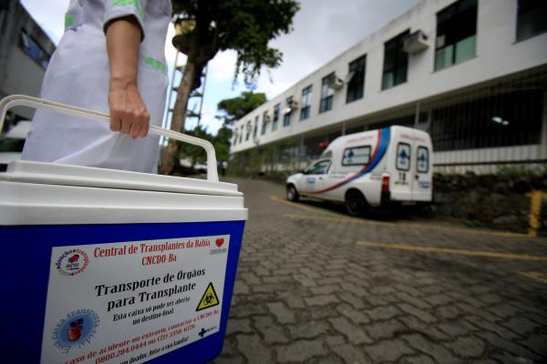 menschliche organtransportbox