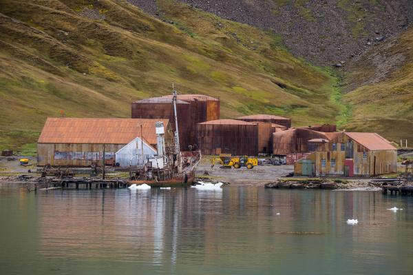 ehemalige walfangstation grytviken suedgeorgien antarktis