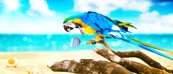 ara papagei mit medizinischer maske im