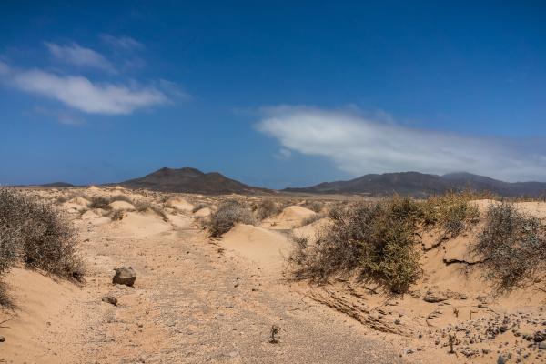 verlassene sandflaechen der halbinsel jandia