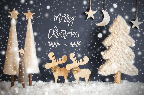 weihnachtsbaum elch mond sterne schnee text