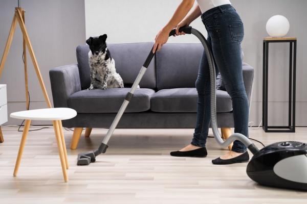 junge maid reinigungsteppich mit staubsauger