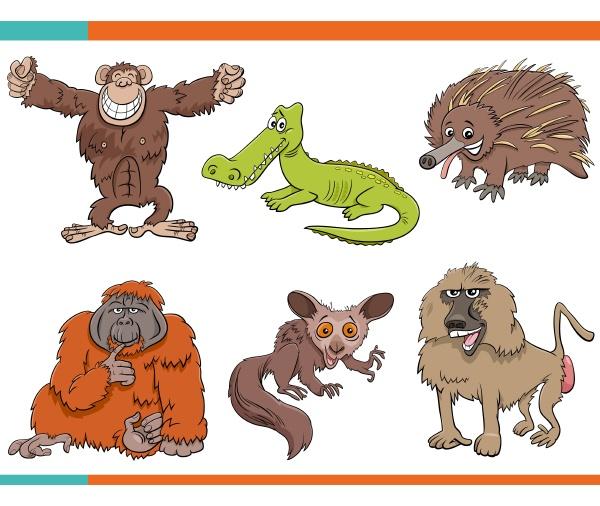 set von cartoon lustige wilde tiere