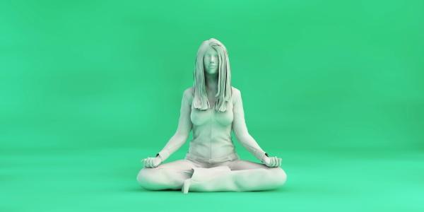 zen state