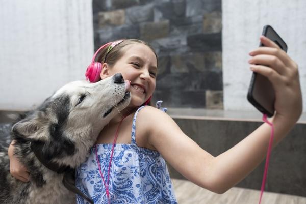 mädchen, das, selfie, mit, hund, über, das - 29114744