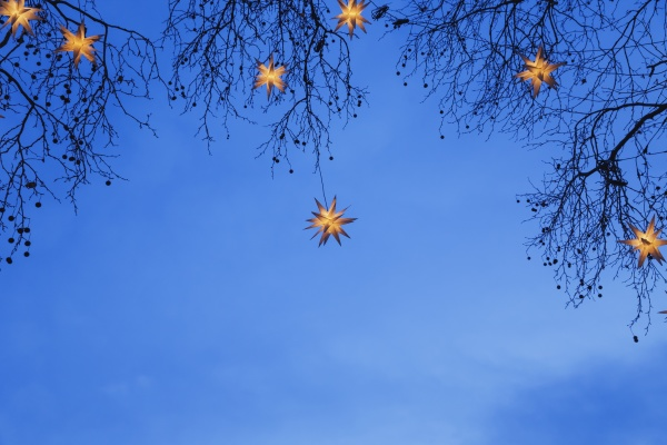 beleuchtete weihnachtssterne die in AEsten haengen