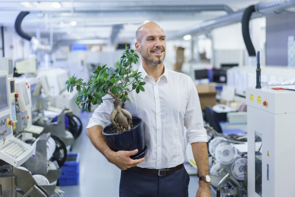 laechelnder geschaeftsmann mit topfpflanze beim blick