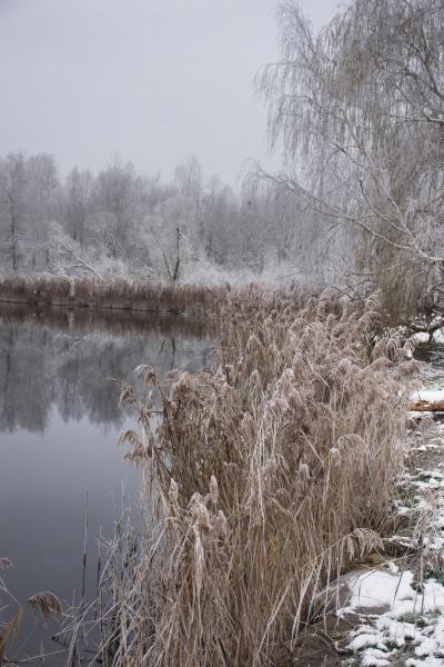 winterfrostige landschaft