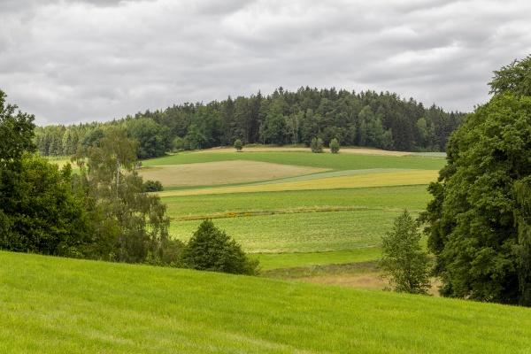 bayerische waldlandschaft