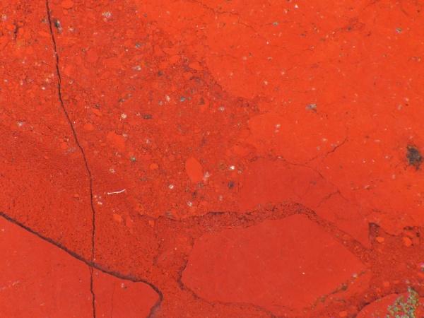 jasper edelstein in einem makro schuss