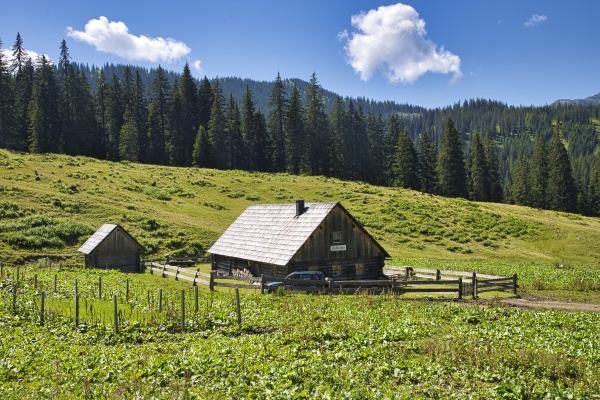 OEsterreich styria gesAEuse national park