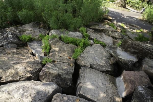 beautiful, stonegarden, with, streamside - 29761614