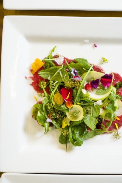 schoene gruens salat mit lebendigen essbaren