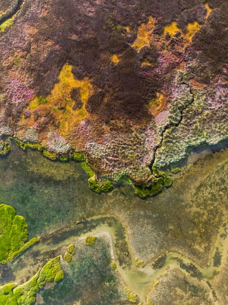 luftaufnahme des feuchtgebiets velddrift bunt abstrakt