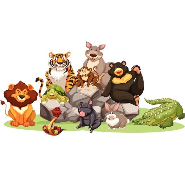verschiedene arten von wildtieren auf dem