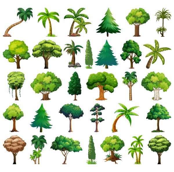 set, of, variety, plants, and, trees - 30415505