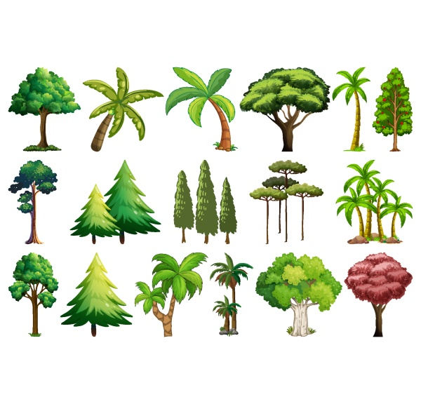 set, of, variety, plants, and, trees - 30423427