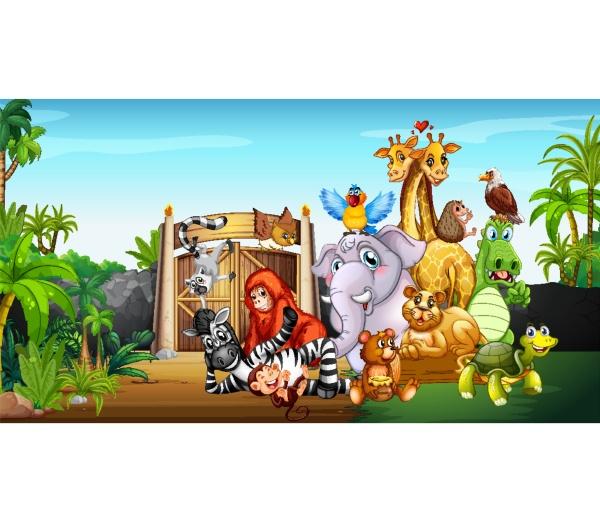 many, cute, animals, at, the, zoo - 30463437