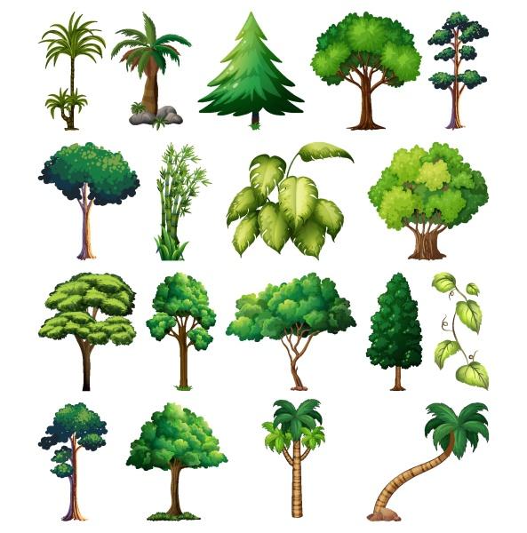 set von sortenpflanzen und baeumen