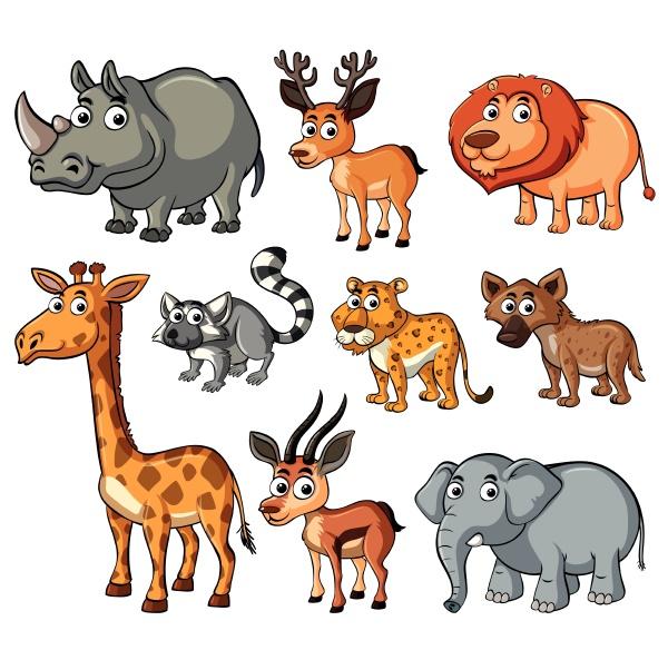 verschiedene, arten, von, wildtieren - 30549854