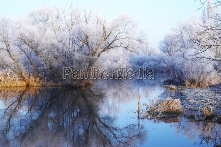 morgen frost