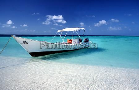 paradise boat ii