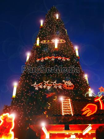 groesster weihnachtsbaum der welt