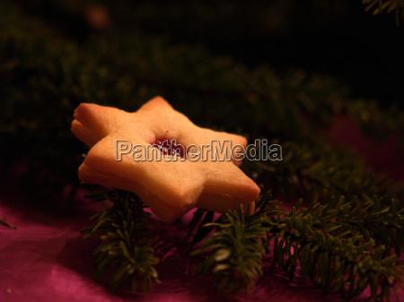 leckerer weihnachtsstern