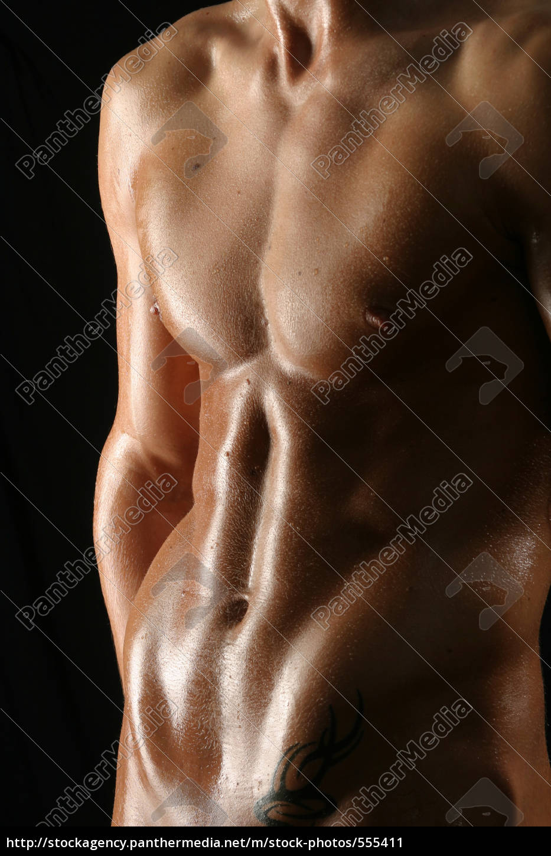 Bauchmuskeln am Mann - Stockfoto - #555411 - Bildagentur PantherMedia