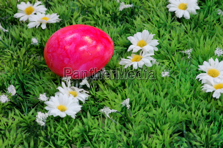 pink easter egg in the meadow