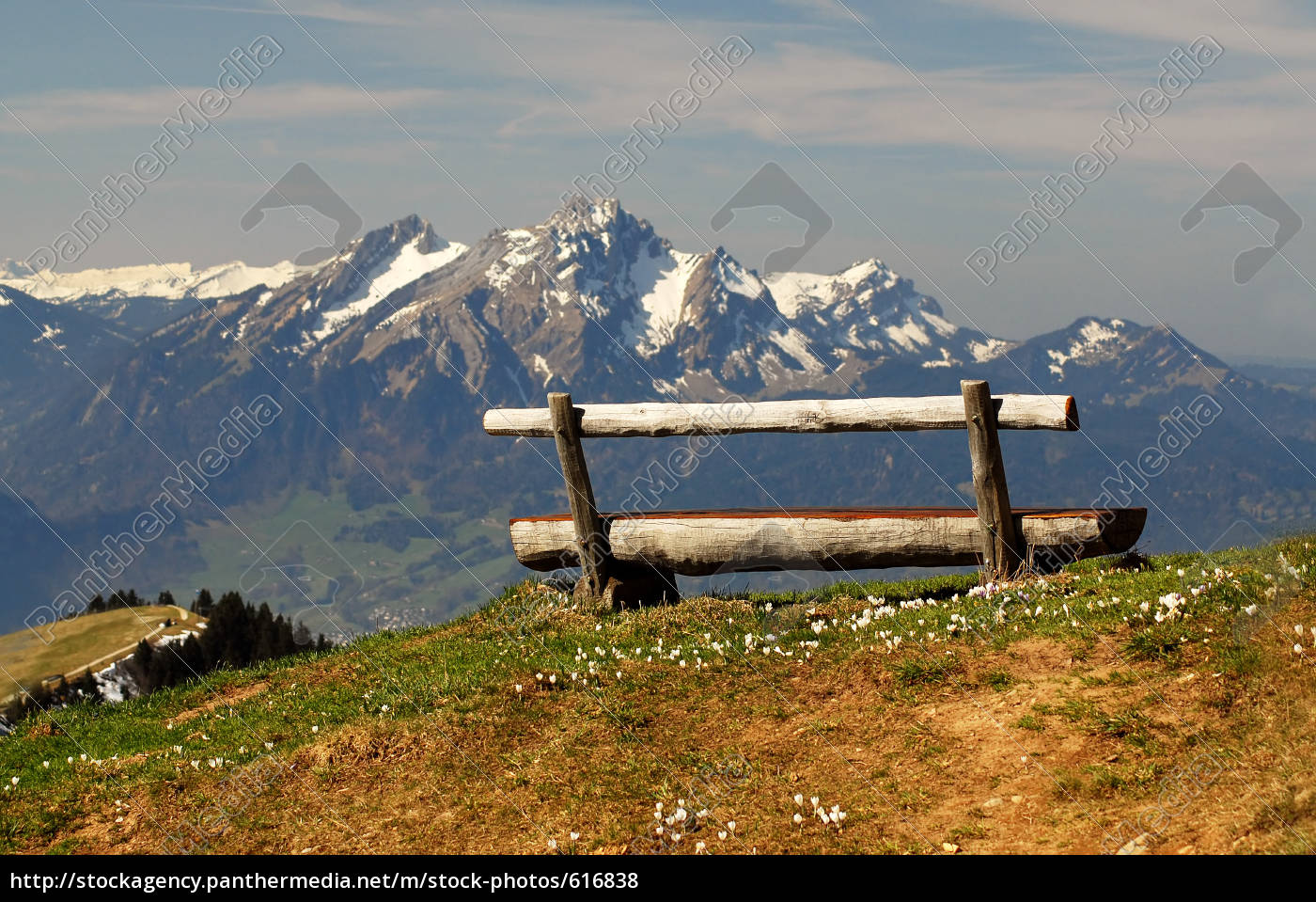 bergfrühling - 616838